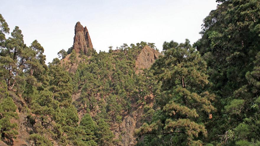 Aguja del Roque Idafe, símbolo de Taburiente. Axel Brocke