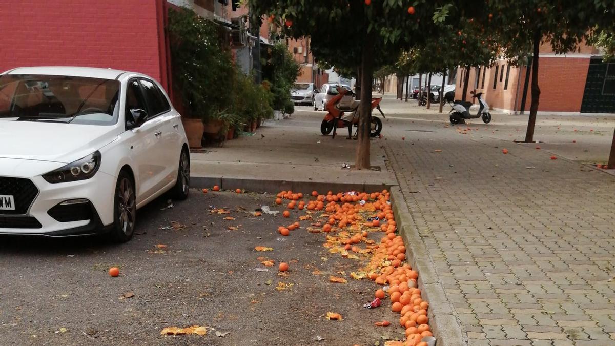 Naranjas en el suelo de una calle de la ciudad.