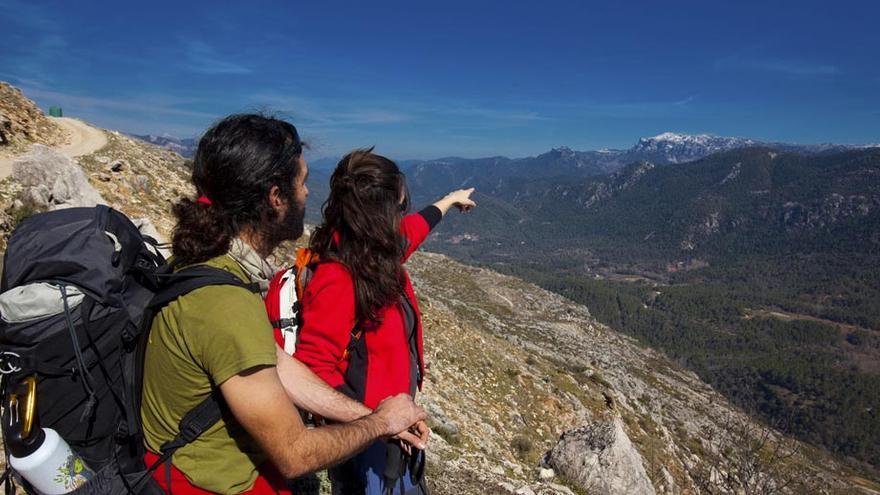 Sendero GR-247 Bosques del Sur/Diputación de Jaén