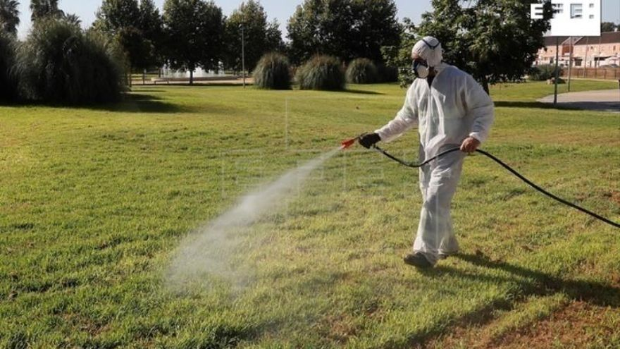 El alcalde de Coria pide a la Junta más control de los mosquitos por el brote de virus del Nilo
