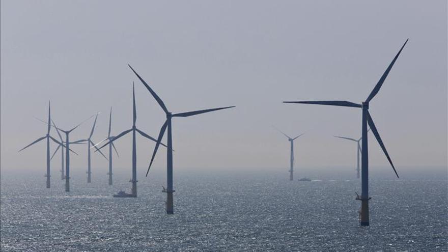 Los subsidios al petróleo limitan el auge de energía renovables, según REN21