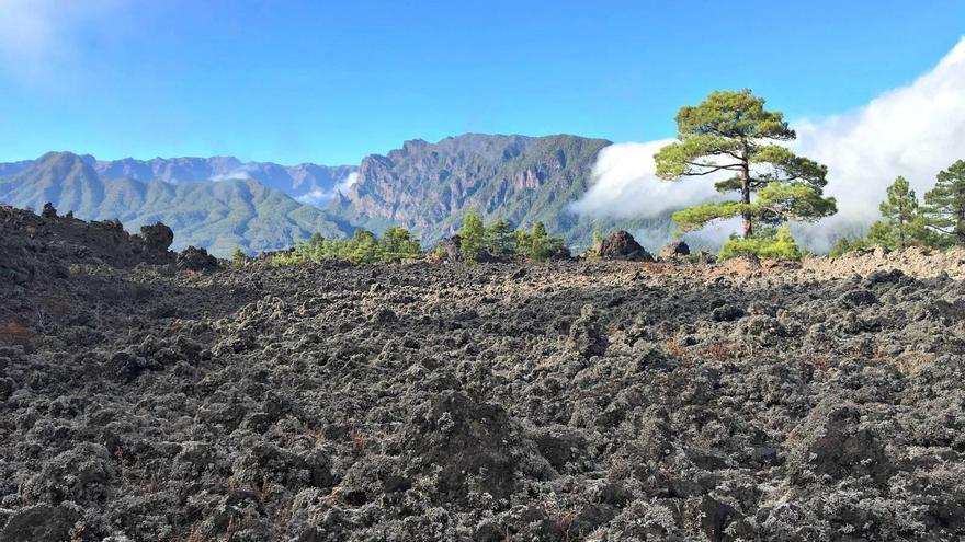 El Bejenao de fondo, con el campo de lavas de Montaña Quemada en primer término.