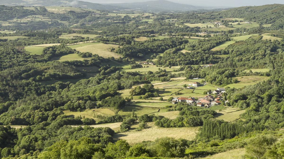 Paisaje en la comarca de Chantada, en el interior de Galicia