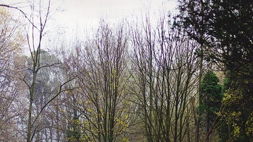 El parque de La Viesca, declarado Área Natural de Especial Interés