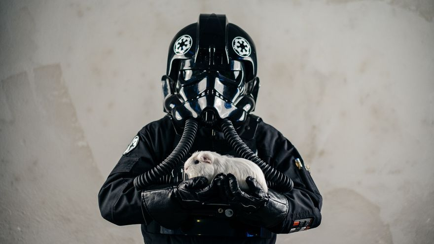Un integrante de la Legión 501 Spanish Garrison de Star Wars con una animal rescatado por Rabbit Rescue Spain. Foto: © Javier Gamonal / Animei Beat