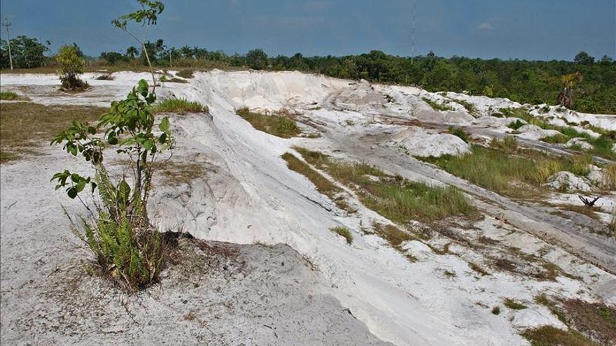 La deforestación de la Amazonía brasileña aumenta un 28 por ciento