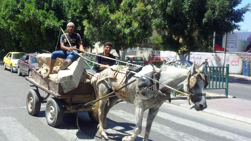 Trabajadores palestinos a su llegada tras recoger bloques de piedra y asfalto antiguo de la línea verde/ Foto: Isabel Pérez, mayo 2014.