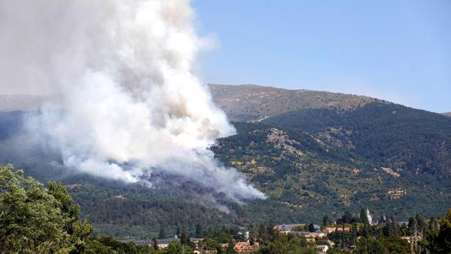 Un incendio declarado esta tarde en la provincia de Segovia está afectando a una zona de pinares próxima al Real Sitio de San Ildefonso-La Granja, declarada Reserva de la Biosfera, en el Parque Nacional del Guadarrama.