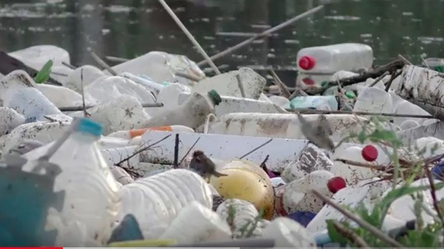 Imagen del Video elaborado por Greenpeace