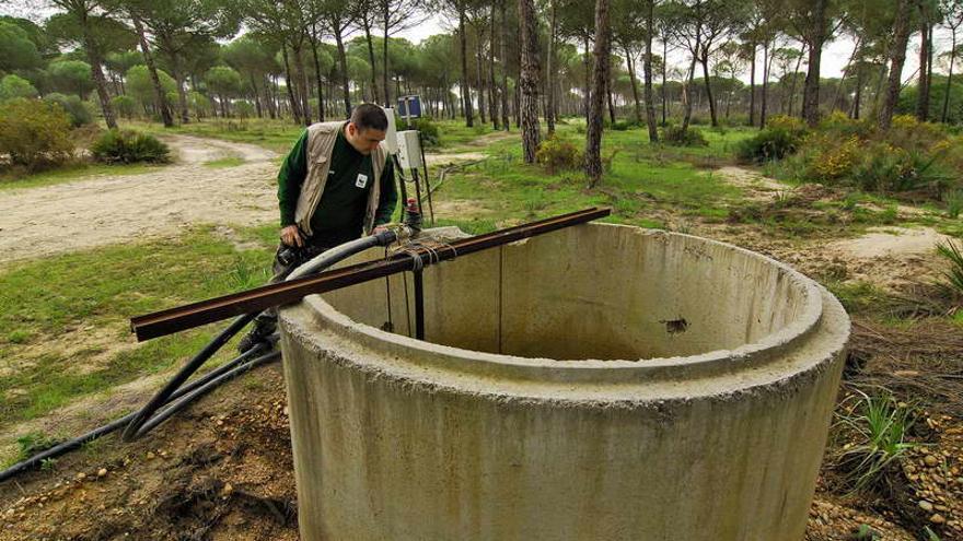 Pozo ilegal en el arroyo de la Rocina (Doñana) / Jorge Sierra WWF.