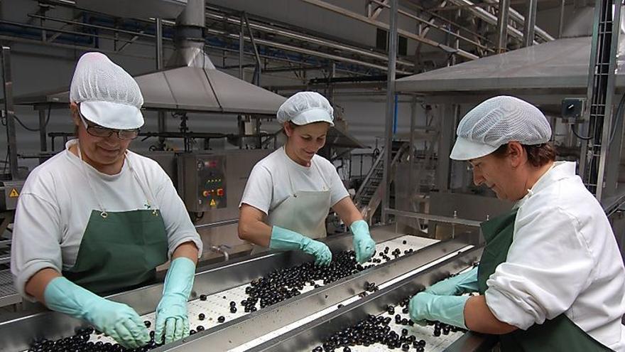 mujeres industria aceitunas