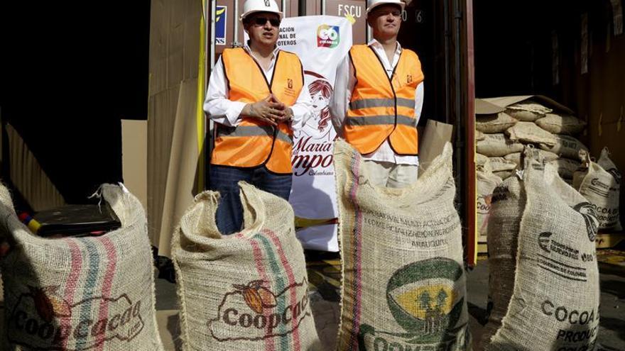 Colombia exporta cacao de alta calidad cultivado en zonas de posconflicto