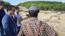 Nuevo abono de casi 5 millones de euros en ayudas, entre ellos más de 1,8 millones al pastoreo, para  2.000 profesionales