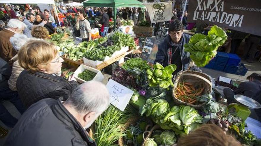 La iniciativa 'de l'horta a la plaça' ha convertido la plaza del Ayuntamiento de Valencia en un mercado de productos naturales
