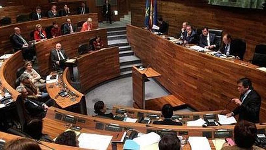 Asturias_pleno