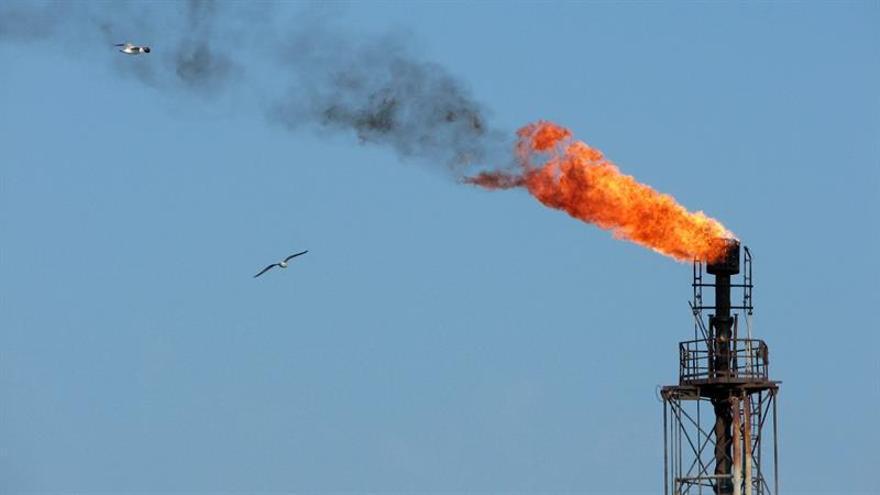 El petróleo de Texas abre con un descenso del 1,56 % hasta 48,02 dólares