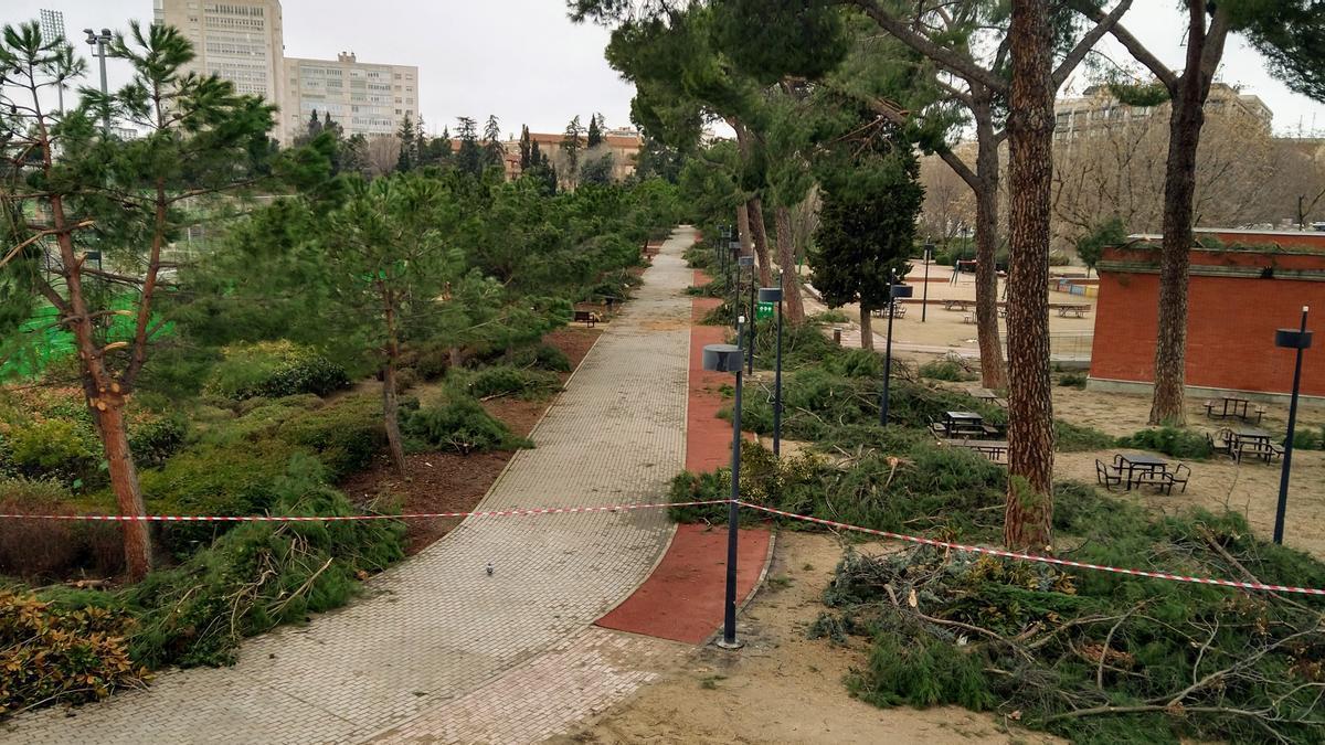 Parque del Tercer Depósito en Chamberí, cerrado por las ramas caídas de los pinos tras el paso de Filomena