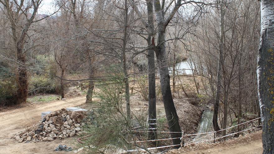 """El """"destrozo"""" de la ribera del Henares, otra mancha en la gestión ambiental del Ayuntamiento de Guadalajara"""