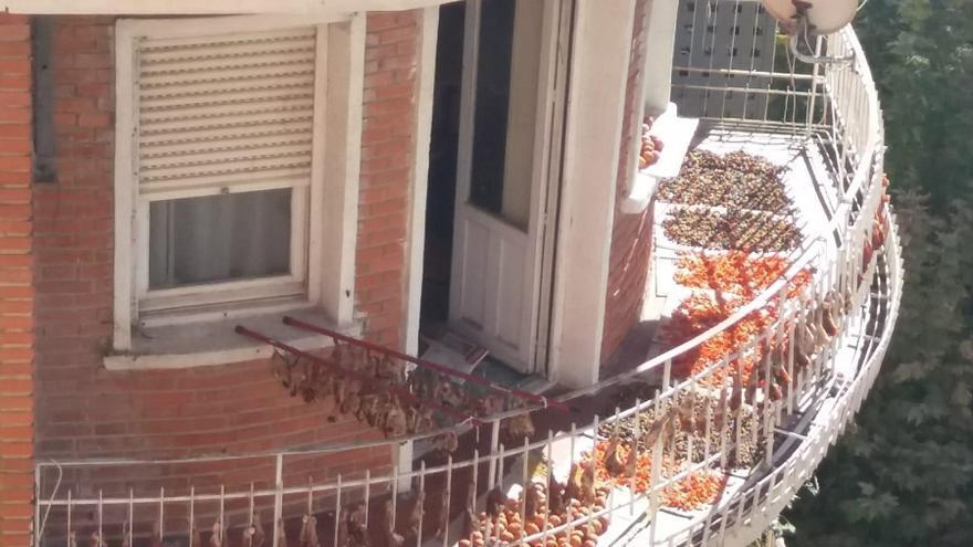 El Ayuntamiento de Albacete estudia la aparición de restos de aves secándose en el balcón de una vivienda