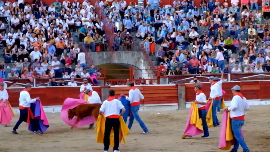 Becerrada en El Espinar (Segovia)