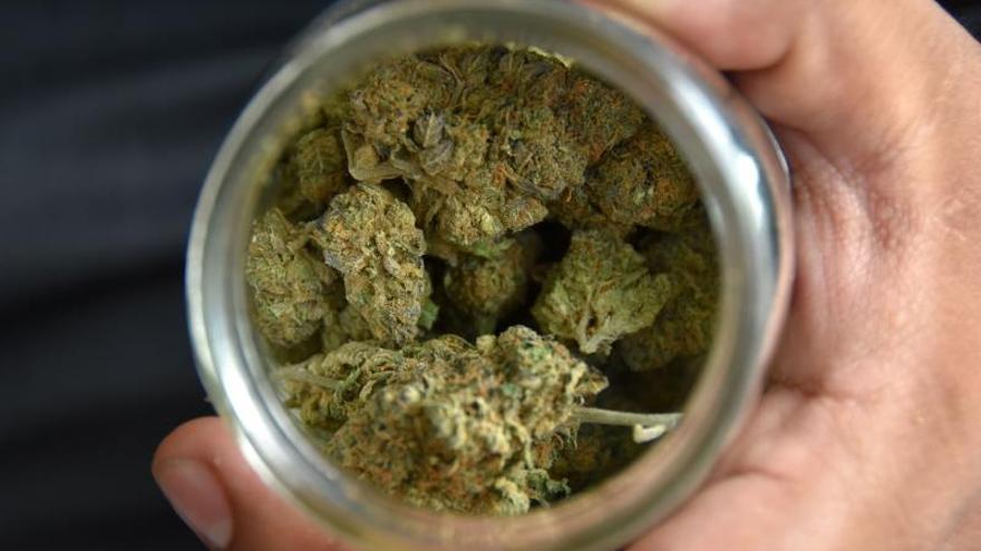 Adolescentes de EE.UU. consumen 10 veces más marihuana que hace 30 años