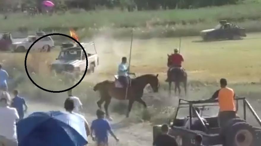 Pantallazo del vídeo de PACMA en el momento en que el toro es embestido por un vehículo