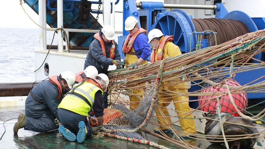El IEO estudiará la distribución y abundancia de sardina en Galicia y el golfo de Vizcaya