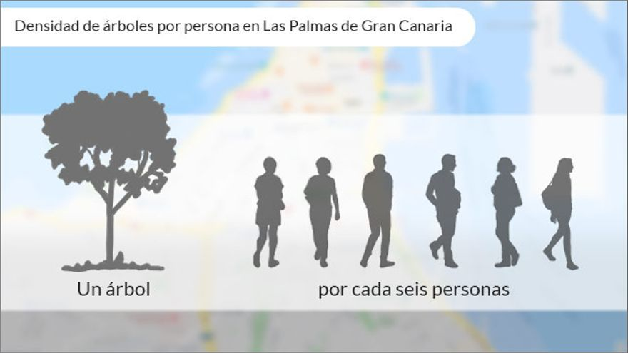 Número de árboles por habitante en Las Palmas de Gran Canaria.