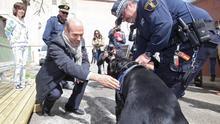 Alicante multa con 6.611 euros al propietario de un perro al que maltrató y no había vacunado