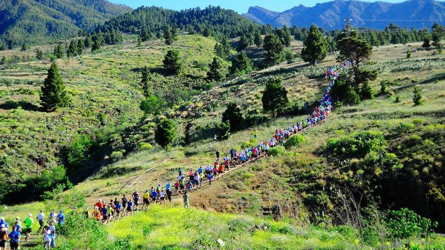 Imagen de archivo de los corredores de la  Reventón Trail 2014 en uno de los tramos de la prueba.
