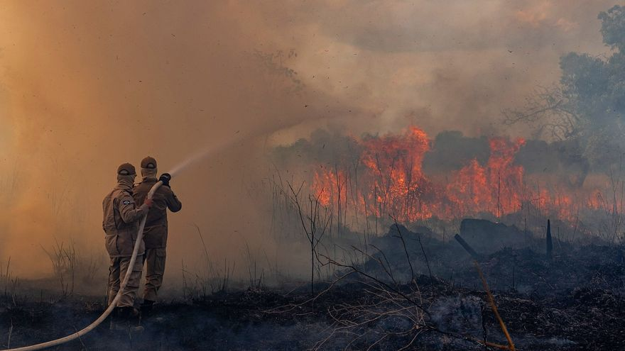 Bomberos tratan de apagar las llamas en uno de los focos del incendio en el Amazonas en el estado brasileño de Mato Grosso.
