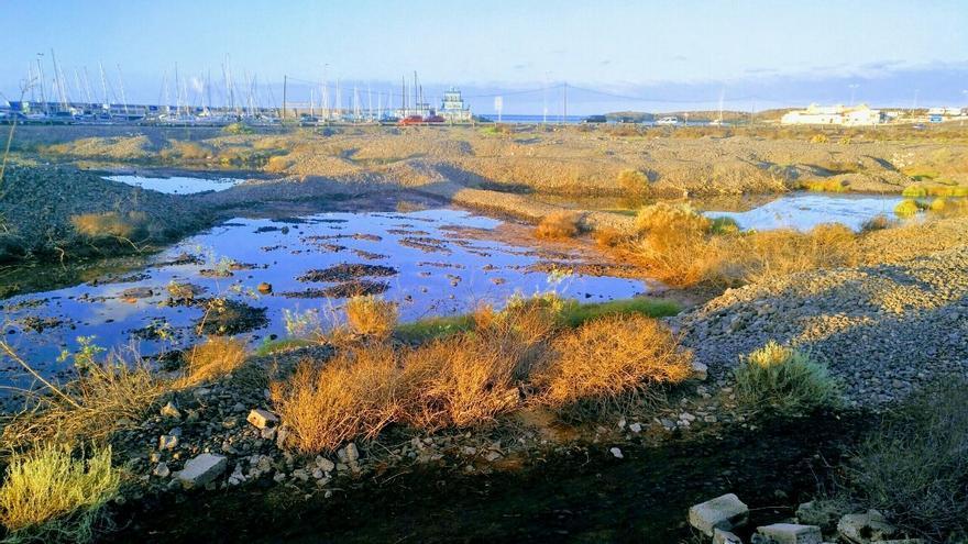 Zonas encharcadas de Las Graveras, en el litoral de Las Galletas