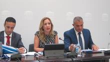 La consejera de Hacienda del Gobierno de Canarias, Rosa Dávila.