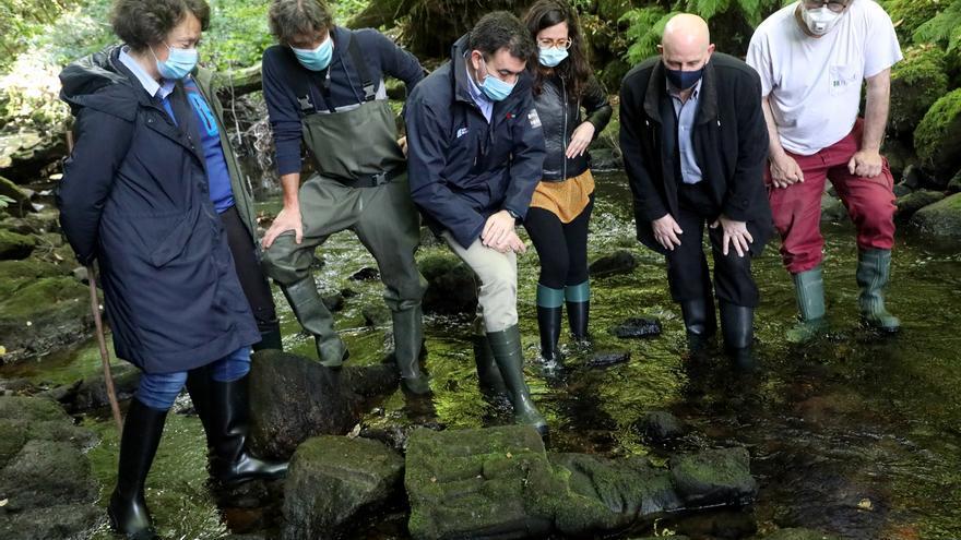 El conselleiro de Cultura y el alcalde de Santiago visitan la zona donde se encontró la talla de piedra.