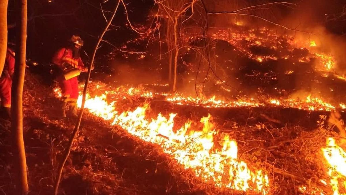 Imagen de un momento del operativo de la extinción del incendio que asoló Gipuzkoa, Navarra y Francia en febrero de 2021