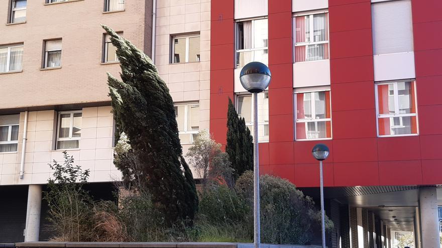 Archivo - El viento sopla con fuerza en Bizkaia