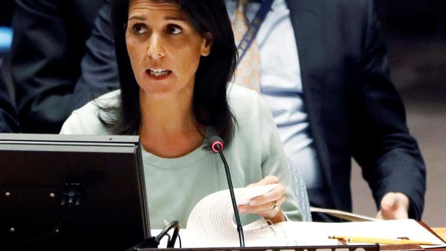 Haley dice que EE.UU. va a cooperar con quien haga falta para derrotar al EI