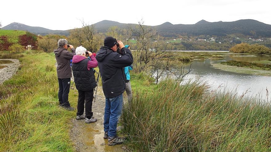 Urdaibai Bird Center organizará en noviembre un curso de iniciación a la observación de las aves acuáticas