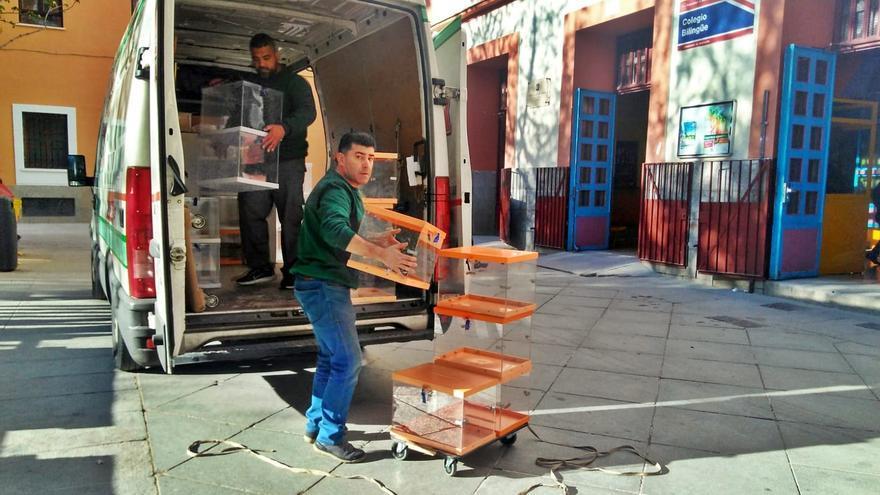 Descarga de urnas electorales en la plaza del Dos de Mayo   SOMOS MALASAÑA