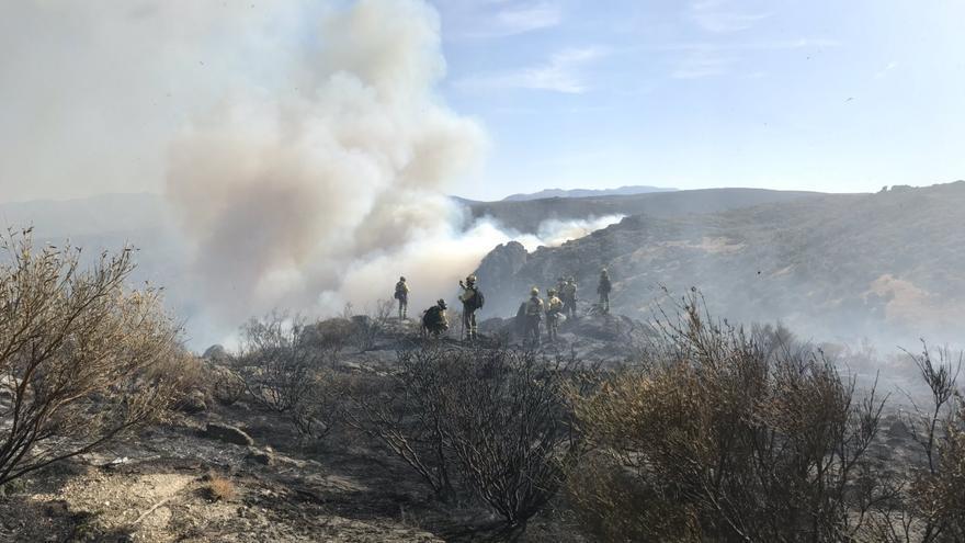 Los brigadistas trabajando en la extinción del incendio en Navalacruz (Ávila).