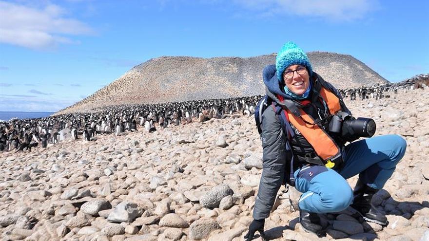 Anne Charmantier, la francesa que rastrea pistas del cambio climático en las aves
