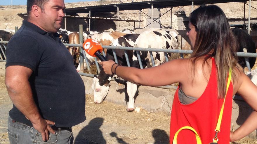Heraclio del Castillo, con granja en Fasnia y uno de los que tira parte de su leche, entrevistado por Antena 3