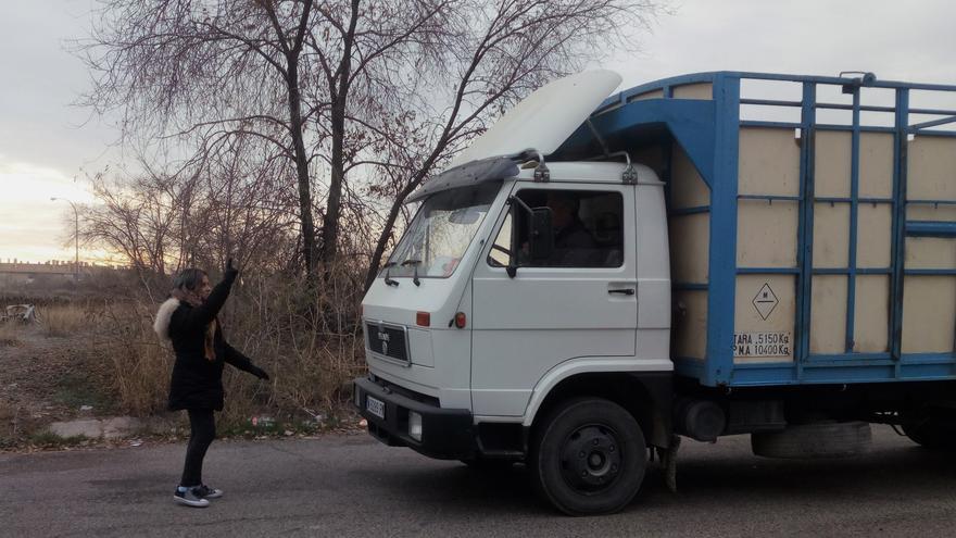 La activista Karol Marocho trata de impedir el paso a un camión que lleva animales al matadero