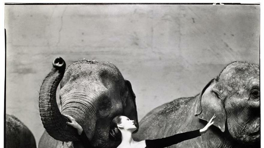 Un repaso a cien años del arte fotográfico de la moda en el Museo de Houston