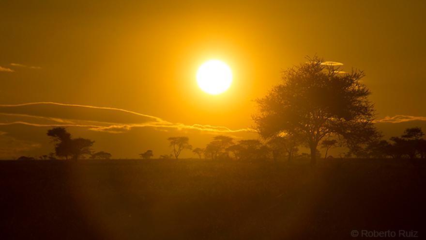 Amanecer en Parque Nacional Serengueti
