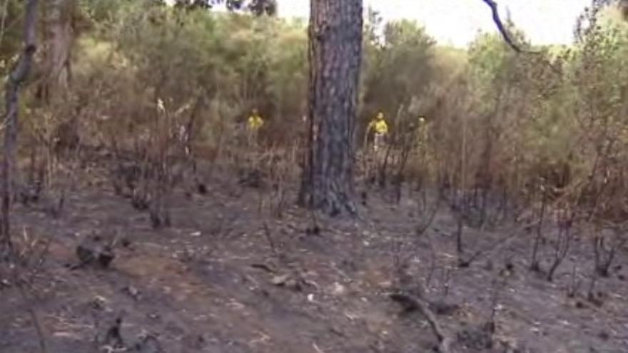 Zona afectada por el fuego en Aguagarcía