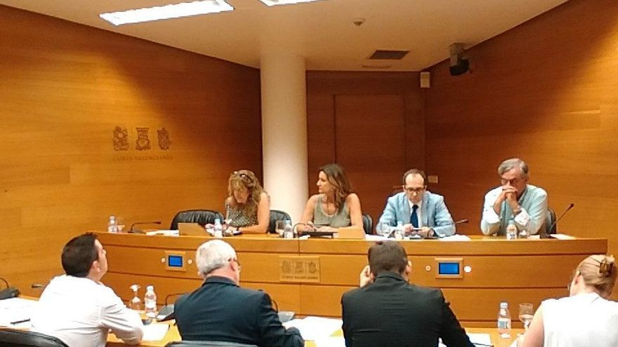 Maite Fernández, a la izquierda, en la comparecencia en las Corts Valencianes.