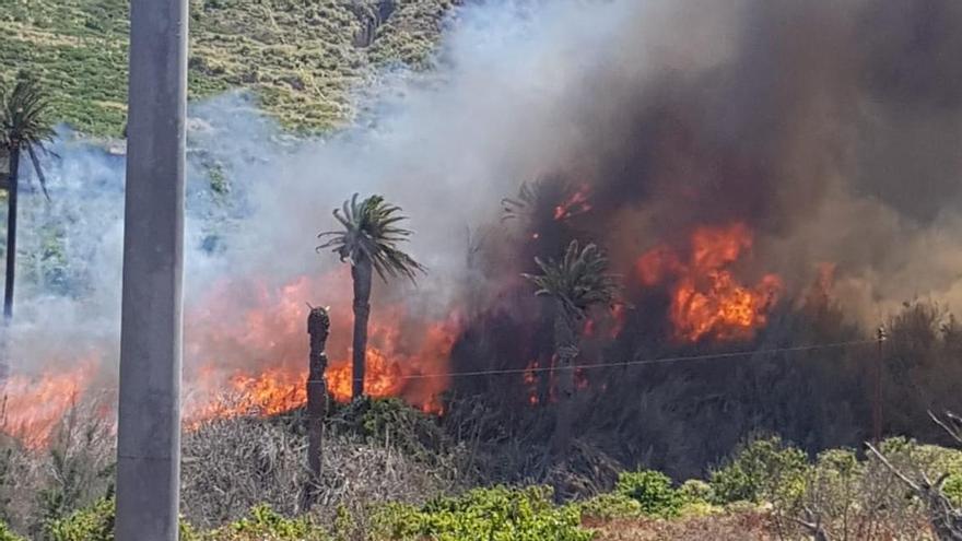 Incendio en Bajamar. (Foto: Bomberos de Tenerife)