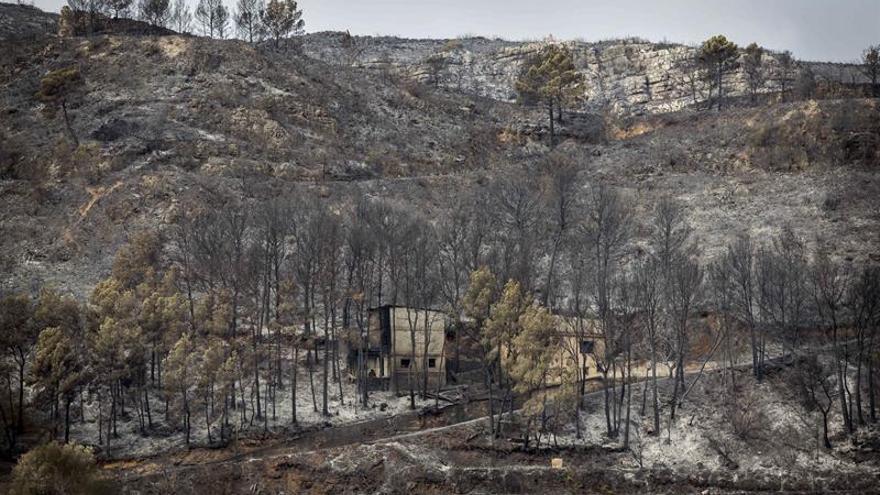 Los bomberos se centran en el incendio de Carcaixent, aún no controlado