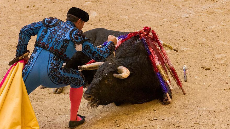 Después de la tortura llega la puntilla, que supuestamente acabará con la vida del toro. Foto: colectivobritches.com